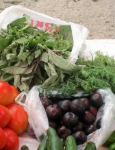 Local herbs, tomatoes and plums